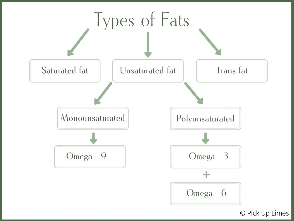 flow chart of types of fats
